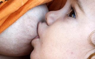 母乳喂养可以使男孩更聪明
