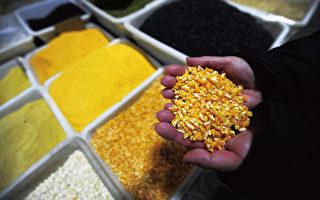 肖明:南昌糧庫火災背後浮現糧食危機陰影