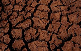 旱情如无缓解 悉尼水费明年7月起或涨价