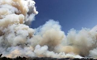 點火求救燒燬半個森林 英國人被罰910萬鎊