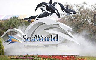 奧蘭多海洋世界  中小學教師遊園免費