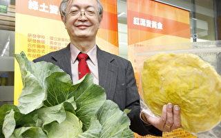 组图:绿土红泥变黄金 台蔬果加值增保存期限