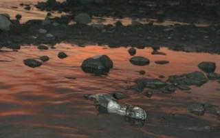 中石油污染松花江  全民買單近80億