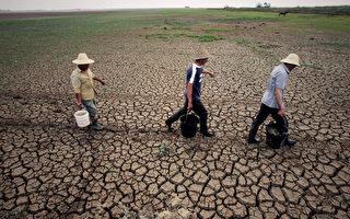 大陆农田土壤恶化严重 粮食自给率逐年下降