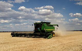 解决农场人手短缺 澳洲总理支持推农业签证