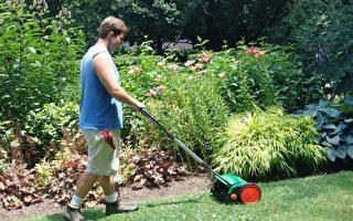 这款割草机真实用 遇到障碍还会这样做 看了就想拥有