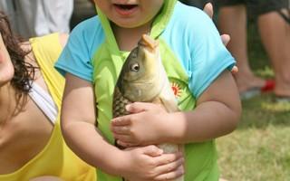 韓國奉化銀魚慶典 體驗捕魚吃魚樂趣