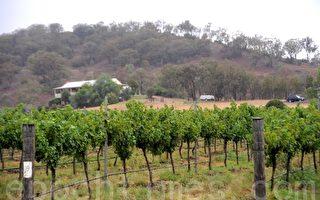 鼓勵悉尼人搬鄉村  政府提供搬遷津貼