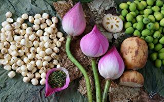 莲花全株都能养生 吃莲子抗老健胃又安神