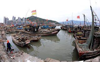渤海污染波及渔民  海洋生物濒于灭绝
