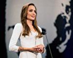 过去10年担任联合国难民署亲善大使安吉丽娜·朱莉(Angelina Jolie)获难民署表扬。(图/Getty Images)