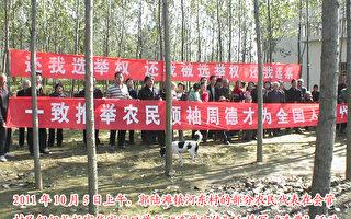 【投書】河東村民推動選舉並追討退耕還林款