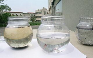 主動孵化魔法魚