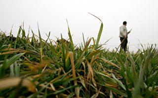 農民抗暴廢農業稅 原國稅局長稱成本高
