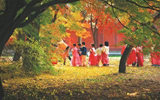 首尔以落叶与丹枫闻名的七处景观