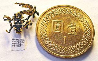組圖:世界最微小雕刻鎏金「龍」
