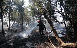法国海外省留尼汪岛森林火灾终于被扑灭