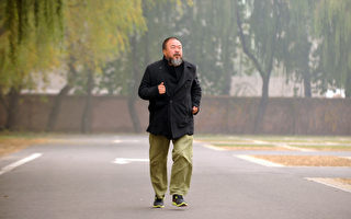 英国《艺术评论》杂志评选艾未未为当今世界最有影响力的艺术家。图为11月16日艾未未在北京的照片。( PETER PARKS / AFP ImageForum)