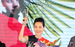 王菲参与慈善募捐  演出服拍卖35万
