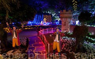 南半球最大花园圣诞灯饰 澳洲猎人谷展出
