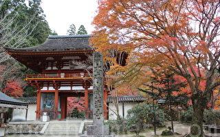 奈良宇陀市室生寺的紅葉