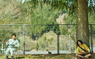 日片啄木鳥與雨 杜拜影展最大贏家