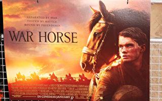 電影《戰馬》受好評  獲奧斯卡六項提名