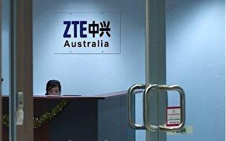 中兴电讯澳洲女雇员投诉性骚扰遭解雇