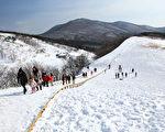 韩国的阿尔卑斯山 大关岭牧场雪景