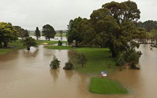組圖:澳洲洪水 1600名居民撤離