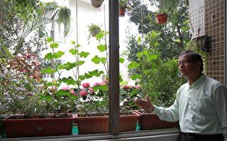 苗栗美丽新视窗 蔬果满园花飘香