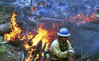 美国6州遭火吻 野火灾区小镇居民撤离