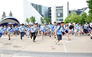 第八屆城市拼圖 400青年體驗多市魅力