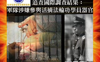 中共軍隊武警大量參與活摘法輪功學員器官報告