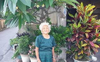 台湾九二高龄祖母自理生活 自得其乐