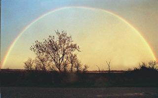 蕙質:彩虹心語
