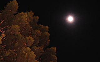 心与月亮的距离