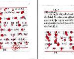 一份300村民請願釋放法輪功修煉者王曉東的案例材料。(大紀元)