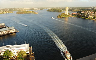 悉尼新購置印尼產渡輪中發現石棉質量堪憂