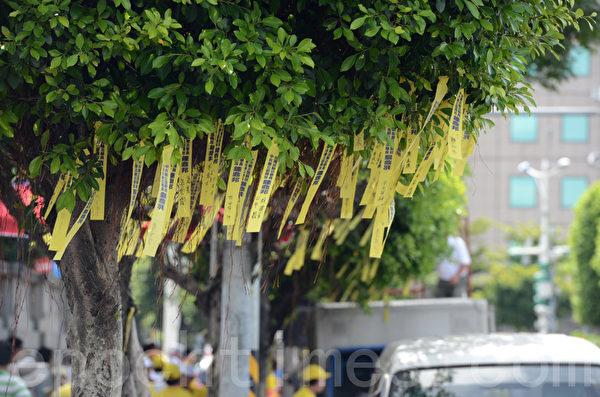 7.23在凯达格兰大道前系满了象征各界吁紧急营救钟鼎邦的黄丝带。(摄影:苏玉芬/大纪元)