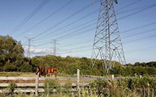 高峰期節電 AGL客戶可獲百元優惠