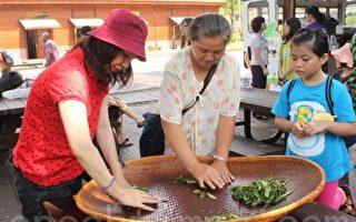 南投休閒農業體驗   推農村套裝旅遊