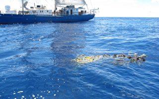 海洋垃圾污染加重  环保组织吁立即行动