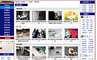 中共中央政府网被攻占?页面图片全是猫