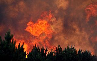 法国渡假注意防森林火灾和自救