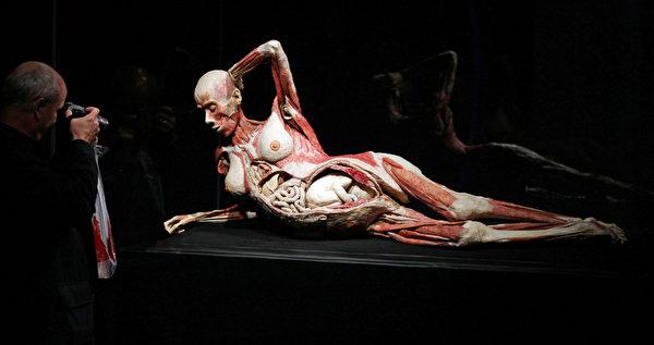 """大连""""冯•哈根斯生物塑化公司""""近几年在全球进行尸体巡回展览,其中,有一具冯·哈根斯塑化的怀孕妇女和她肚中孩子的尸体标本来源备受争议。图为,2010年9月12日,在德国的尸体展。 (AFP PHOTO / JAN WOITAS GERMANY OUT)"""