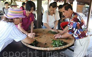 大雁农业区体验   揉捻红茶玩陶艺