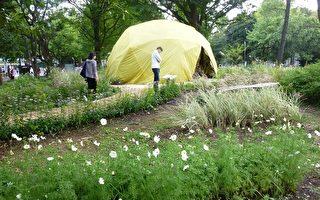 自然宇宙本色七曜之庭 上野庭园创作