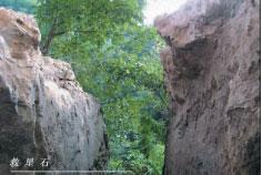 2.7亿年前形成,500年前裂开的贵州平塘县掌布乡的藏字石:中国共产党亡(网络图片)