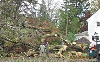 桑迪飓风横扫新泽西 损失远超艾琳